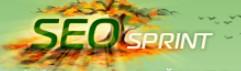 seo-sprint